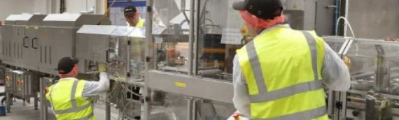 Planning for Recovery in the Manufacturing Sector